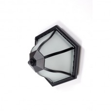 Потолочный светильник уличный  89425 Bl